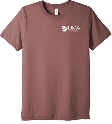 BELLA+CANVAS ® Unisex Triblend Short Sleeve Tee - Mauve